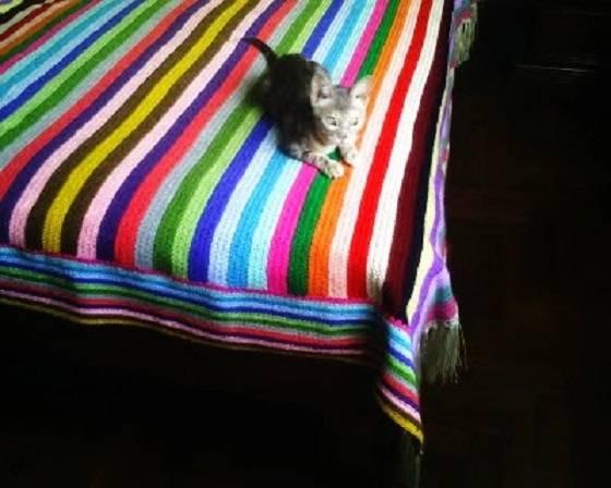 Mantas de crochet a cuadros y otras colchas tejidas con - Colchas de crochet paso a paso ...
