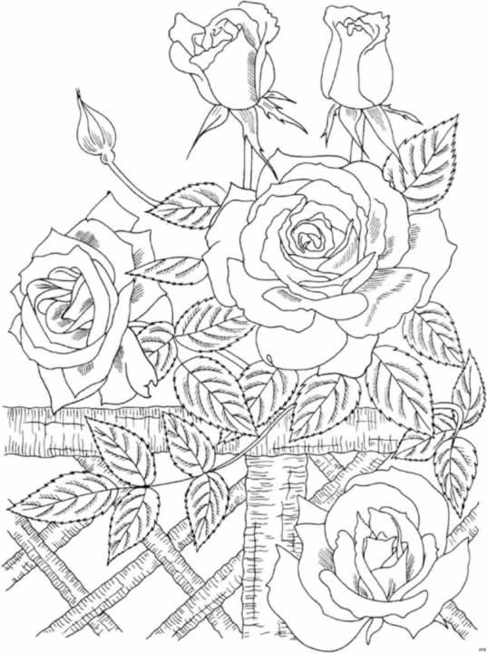 e design scapes coloring pages - photo#39
